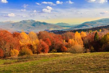 autumn in the mountains, Bieszczady