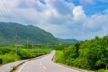 沖縄石垣島 平久保地区の道路
