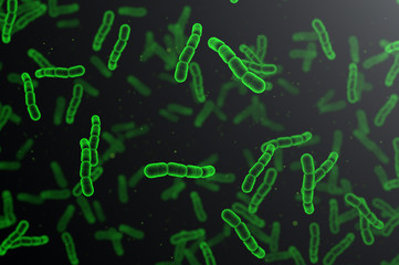 Streptococcus pneumoniae green cells on dark background