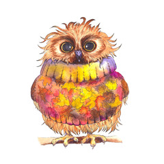 Cute little owl wearing autumn sweater. Watercolor illustration.