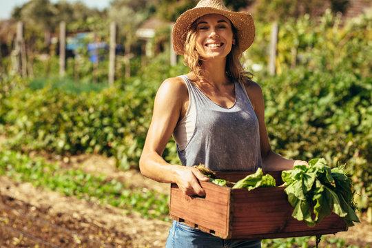 Woman harvesting fresh vegetables from her farm