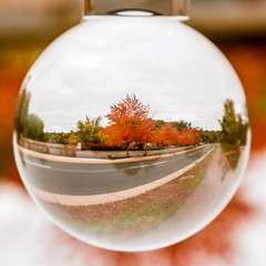 Close up view on beautiful autumn scenes through lens ball sphere