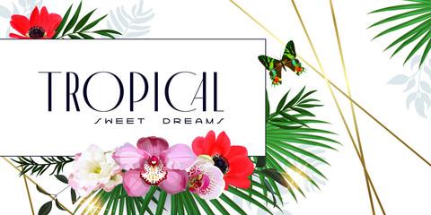 Beautiful tropical banner