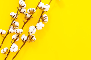 Branch of cotton on yellow background top view space for text