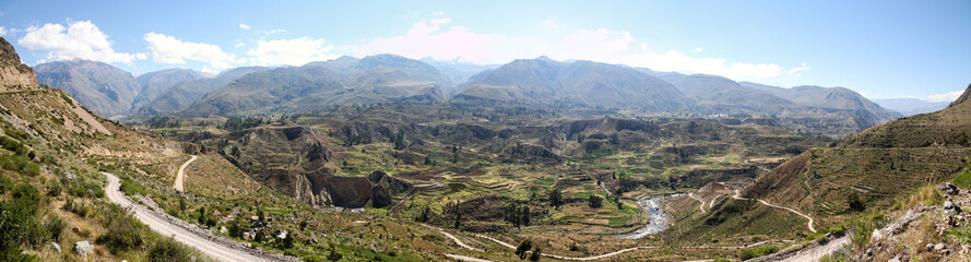 panorama of valley of colca canyon peru with inca terraces Wall mural