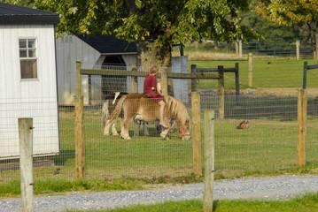 Amish Girl Riding Pony