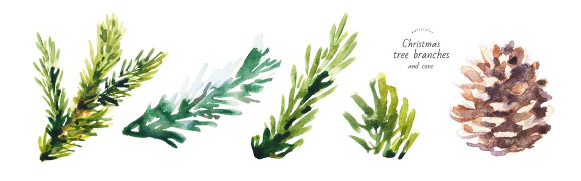watercolor isolated illustration of christmas tree branches, freehand drawing of festive needles from spruce painted with paints, decoration for christmas and new year