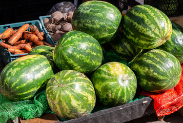 Watermelons and other vegetables selling at the market