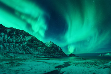 Wall Murals Green coral Northern lights in Lofoten islands, Norway. Green aurora borealis. Starry sky with polar lights. Night winter landscape with aurora, sea, high rocks, stream, nordic beach and snowy mountains. Travel
