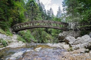 The little wooden bridge