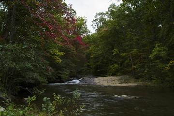 Appalacian Mountains Autumn Waterfall Landscape