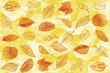 yellow brown colored leaves texture  for nature concept fall concept autumn concept background