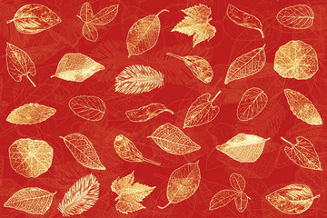 colored leaves texture  for nature concept, fall concept, autumn concept red background