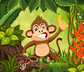 Angry monkey in jungle background