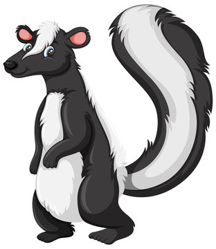 A skunk character on white background