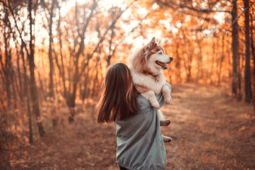 Girl holding siberian husky on hands in the beautiful autumn park
