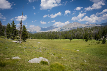 Scenery along the Big Sandy Trail in the Wind River Range