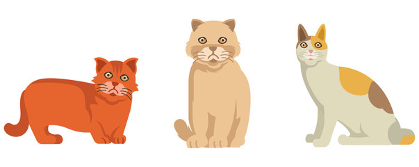 Three little cats in vector