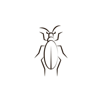 desert insect, beetle icon. Element of desert icon for mobile concept and web apps. Hand draw desert insect, beetle icon can be used for web and mobile