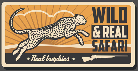 Safari hunting cheetah vector animal