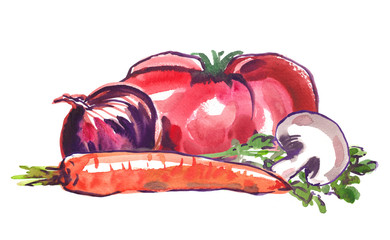 Vegetable ingredients for soup or stew: tomato, red onion, carrot, mushroom and some green herbs. Illustration painted in watercolor on clean white background
