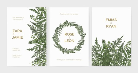 Bundle of elegant stylish wedding invitation templates decorated with green ferns and wild herbs on white background. Colorful hand drawn vector illustration in beautiful exquisite antique style.