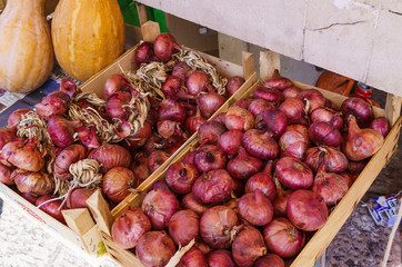 two boxes of red onions and pumpkins at the farmers market