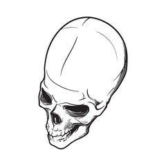 Human Skull hand drawing. Top angle. Black linear drawing isolated on white background. EPS10 vector illustration