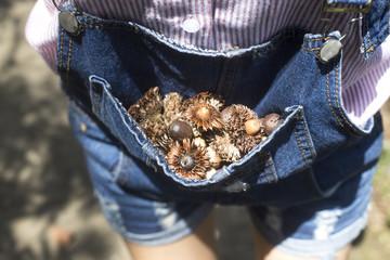 Acorns in jeans pocket