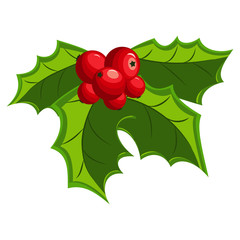 Christmas holly berry leaves. Vector mistletoe icon isolated on a white background.