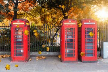 Klassisch, rote Telefonzellen aufgereiht vor einem Park im Herbst in London