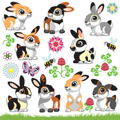 set of cartoon bunny rabbit in different colors . Collection of isolated vector illustrations  for little kids