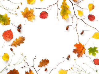Autumn background. Creative flat layout of red autumn leaves, twigs, top view.