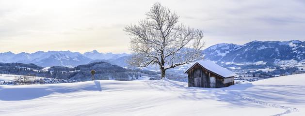 Wall Mural - Winterpanorama im Oberallgäu