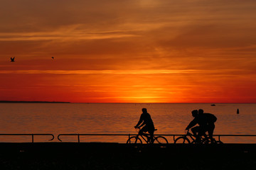 Romantic sunset with a lot of life on the bike - Three cyclists conversing while driving. In the background the sun sets in the ocean. The persons are only to be seen as a silhouette.