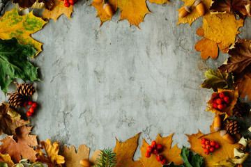 Autumn leaves decoration, cones, acorns and arrangement background with yellow leaves on a gray desktop, top view. Autumn workspace. Place for inscription and logo