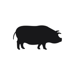 Pig black sihouette on the white background