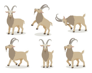 Set of goat in different poses in flat style. Cute realistic goat with long horns for decor, learning children. Vector illustration.