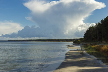 Baltic sea shore in Latvia. Sand dunes with pine trees and clouds.