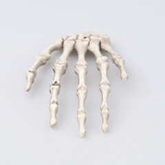 Human finger bone, Halloween concept