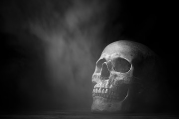 art of Human skull, Halloween concept
