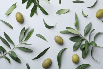 Flat lay composition with fresh green olive leaves, twigs and fruit on light background