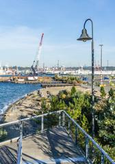 Seattle Port Cranes