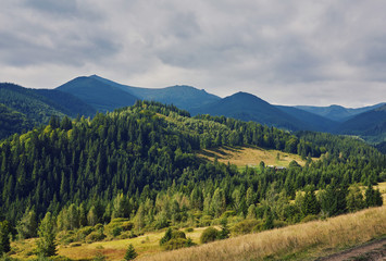 mountainous landscape with forested hills. beautiful summer