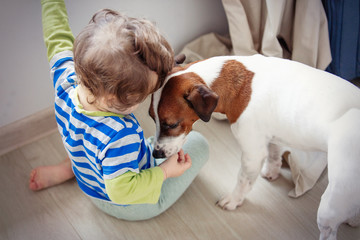 little baby boy with dog at home.