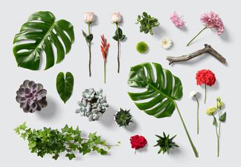 Kit de escena de flores y plantas