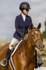 Portrait of a girl and warmblood mare
