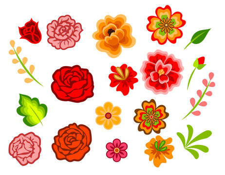 Mexican flowers
