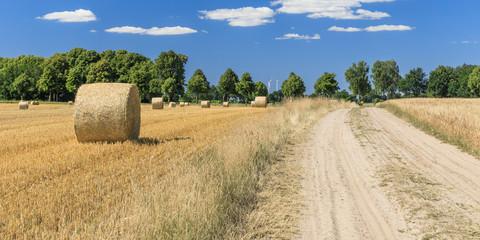 Feldweg durch Landschaft mit Getreidefeldern mit Strohballen bei Horndorf in der Ostheide, Niedersachsen