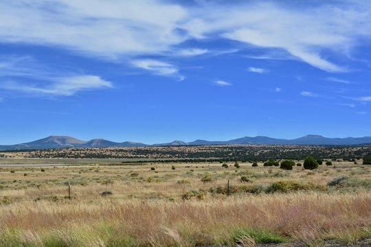 White Mountains Arizona Show Low Pinetop